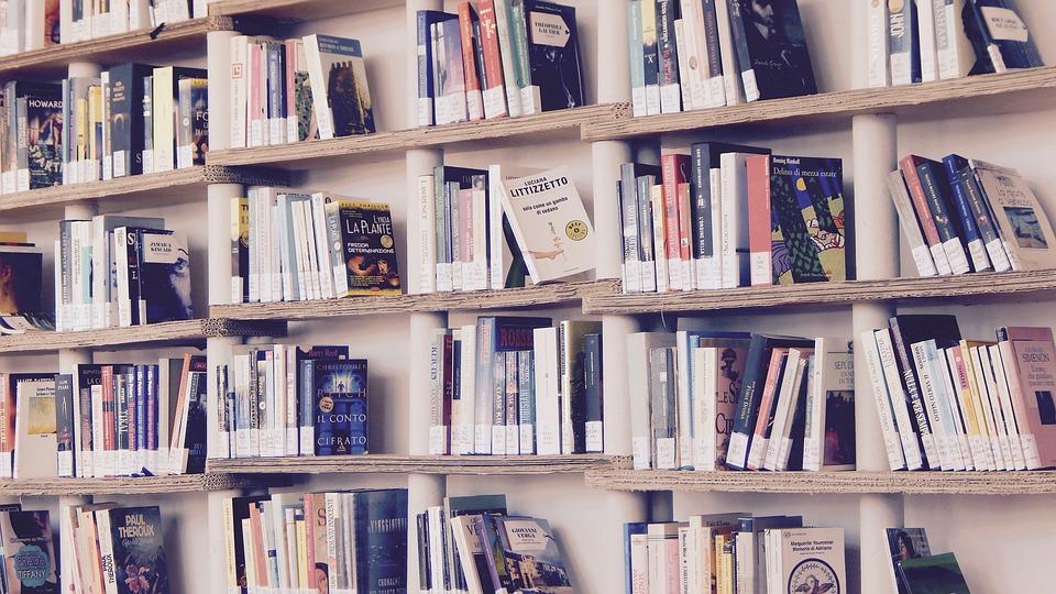 books 1617327 960 720 - Bücher